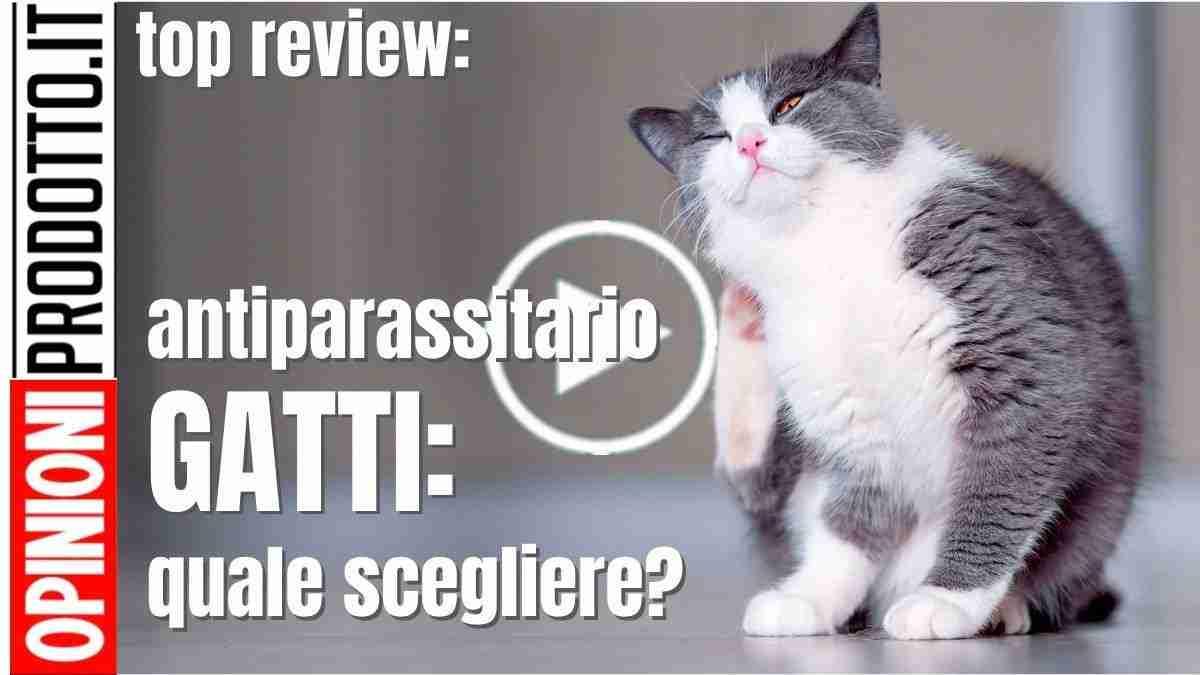 Miglior antiparassitario gatto quale scegliere