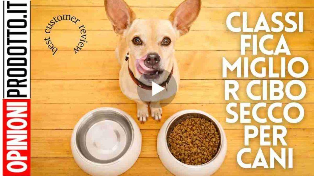 Classifica miglior cibo secco per cani