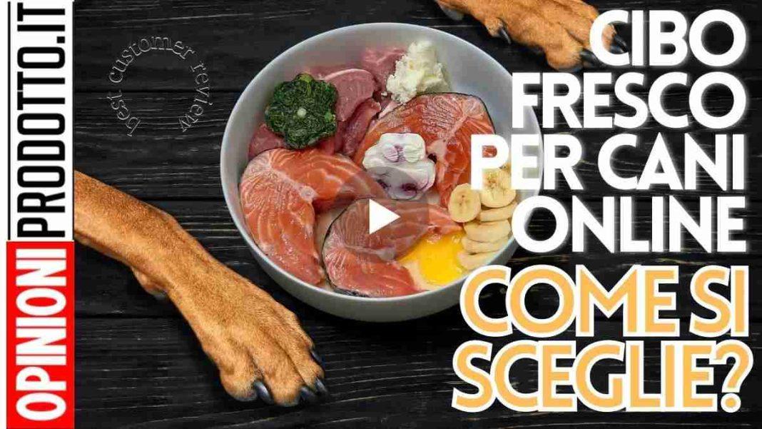 miglior cibo fresco per cani online